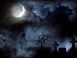 Cemetery395953_960_720
