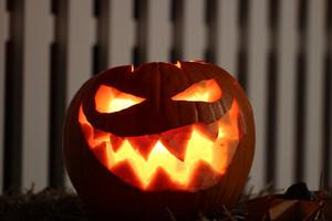 Pumpkin1789832_960_720