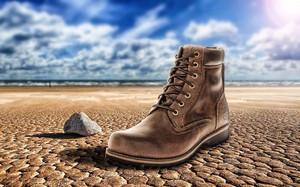 Shoe1743929__340