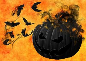 Pumpkin988231__340