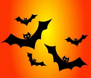 Bats151206_960_720