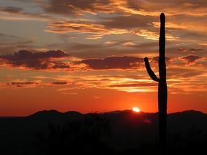 Arizona113684__340