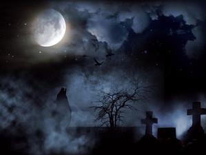 Cemetery395953__340